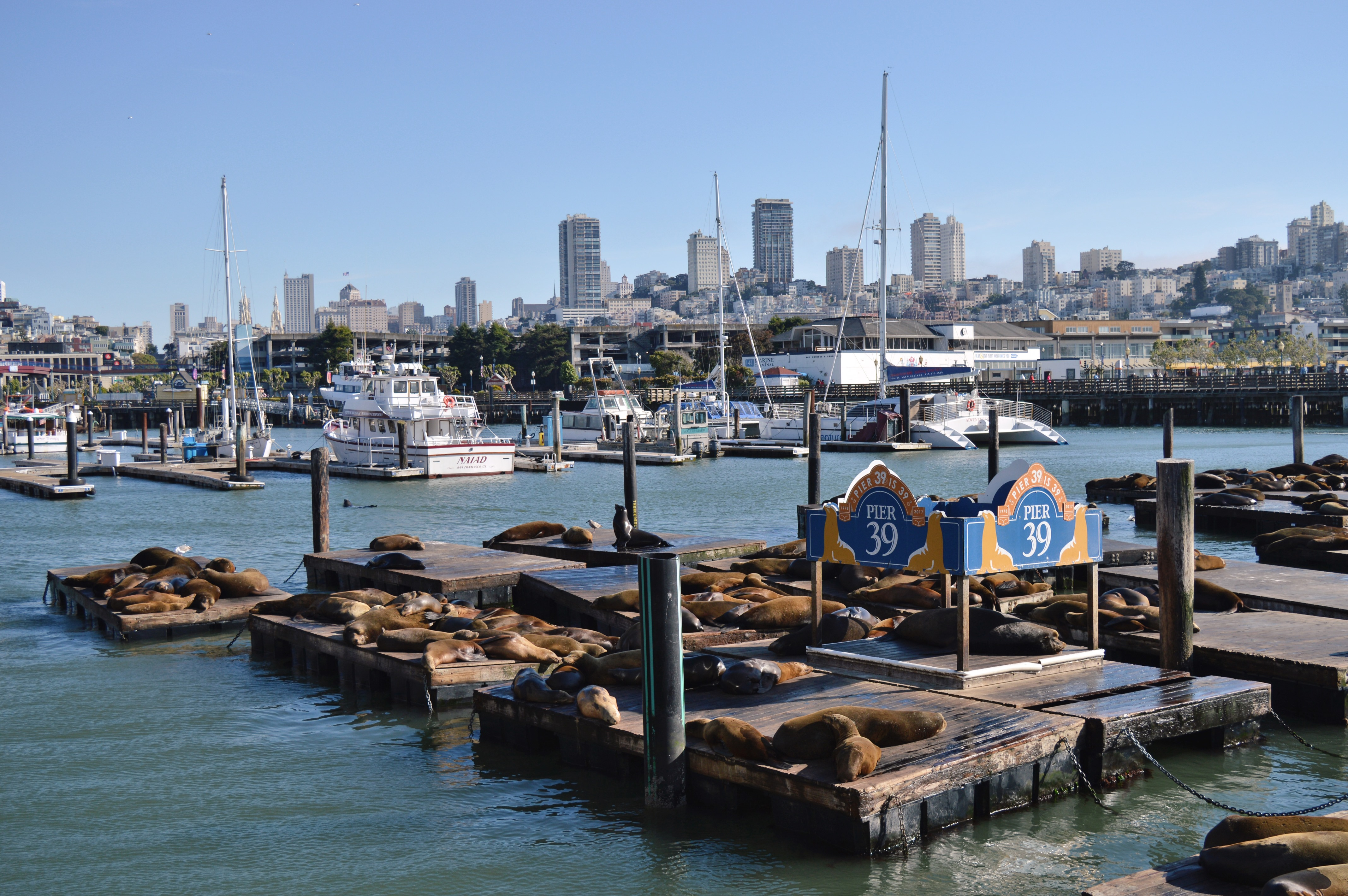 fishermanswharf1.jpg