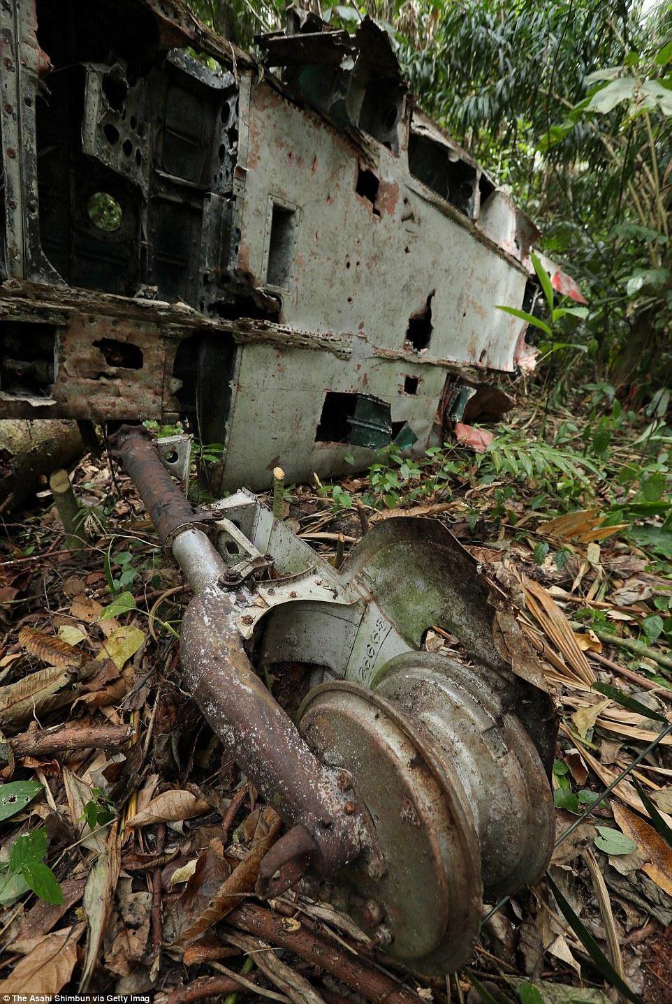 Egy japán A6M Zero vadászgép roncsa a salamon-szigeteki Guadalcanal sziget dzsungelében.