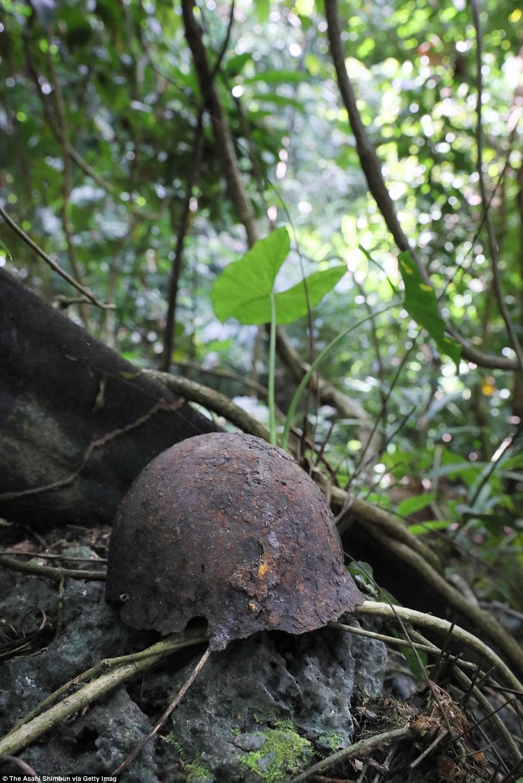 Egy rozsdás japán rohamsisak a salamon-szigeteki Guadalcanal szigetének Barana dzsungelében.
