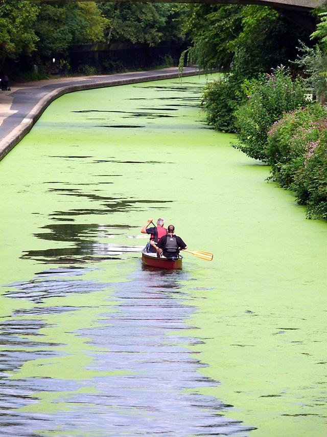 s-regents-canal-boat-21.jpg