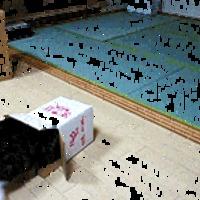 A macska és a doboz