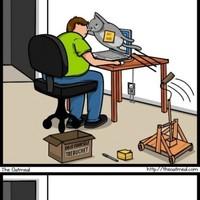 Macska vs Internet