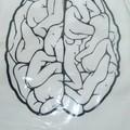 A férfiak agya