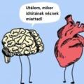 Minden a szív hibája!