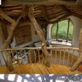 Odú-ház az erdő mélyén