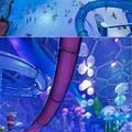 Elképesztő aquapark