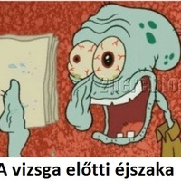 A vizsga előtti éjszaka