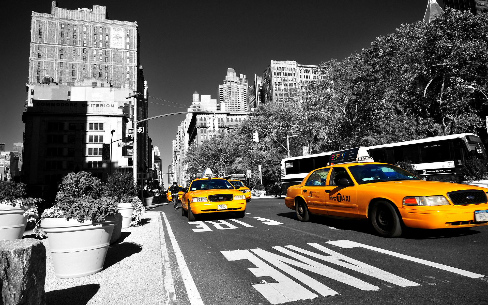 new-york-taxi-hd-free-for-1537434.jpg