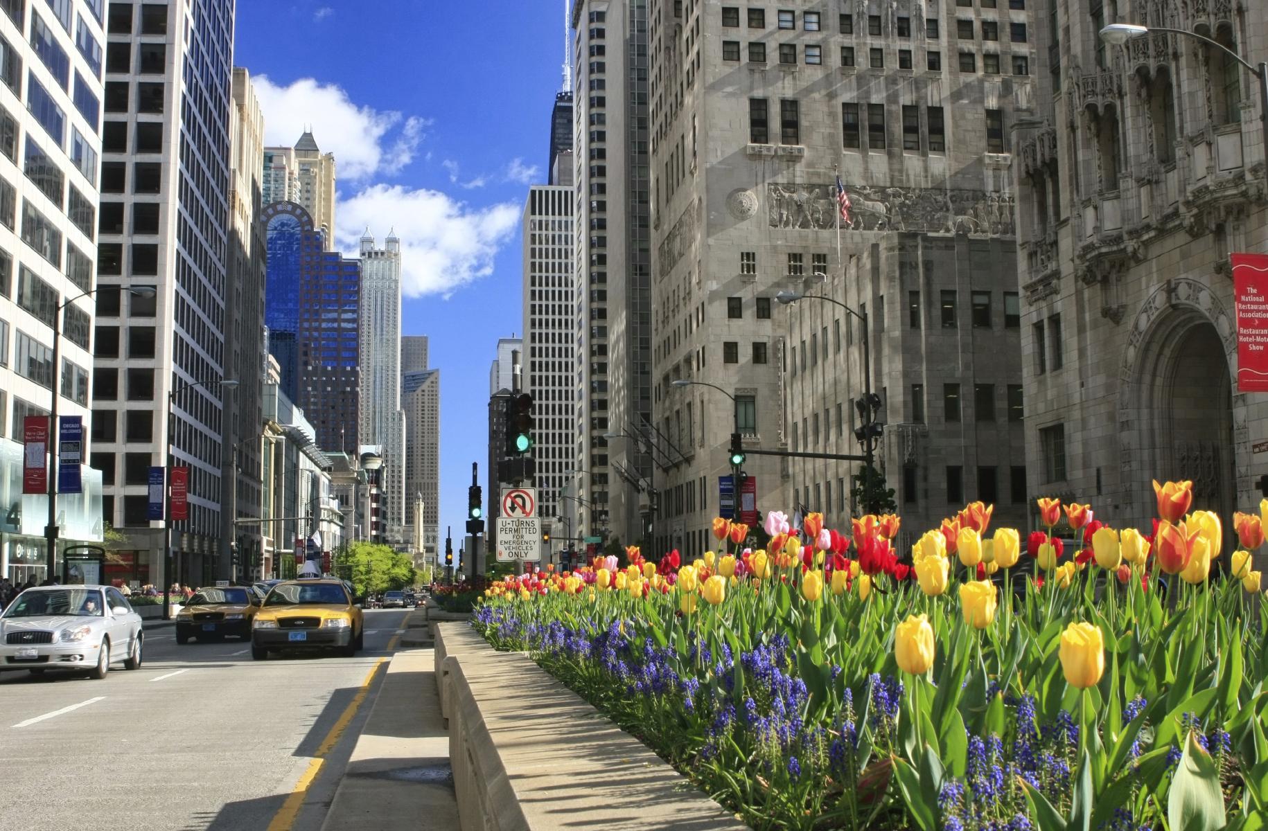 chicago-mag-mile-bloom-16024579.jpg