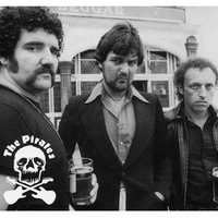 Peel Sessions: The Pirates (1977.11.08.)