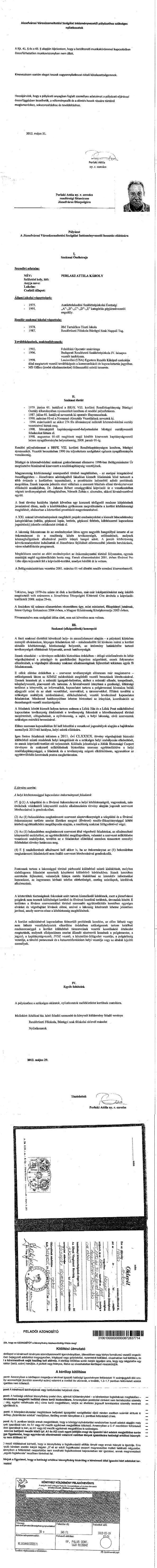 Perlaki Attila p+íly+ízati anyaga II-11.jpg