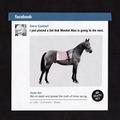 Fogadj a lovak halálára!