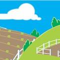 Az élelmiszer-nagykereskedő vállalkozásoknak is agrárkamarai tagdíjat kell fizetniük – A meghosszabbított határidő július 31.