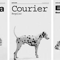 Milyen típusú a kutyád? Times new roman...