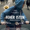 trailer + poszter: fehér isten (2014)