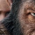 szinkronhangok: a majmok bolygója - háború