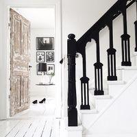 Napi-kisszínes: black & white & brown