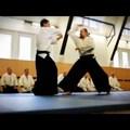 Újabb profi cseh aikido-klipp
