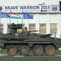Brave Warrior 2015
