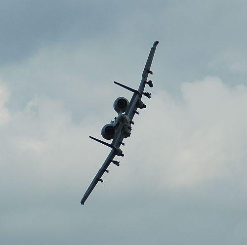 bw-25.jpg