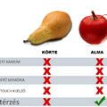 Körte vs Alma