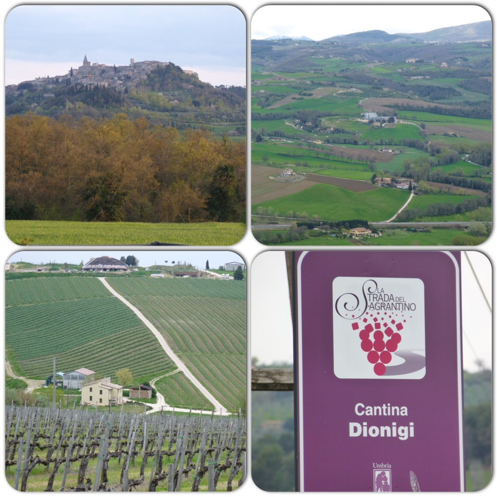Tour de serpenyő (Giro)  2016. 7 szakasz - Umbria- Ragu di cervo in bianco