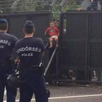 Dobjuk a gyerekünket az Unióba – morbidus Hungaricus
