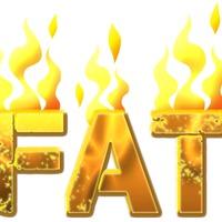Zsírok - anyagcsere áttekintés