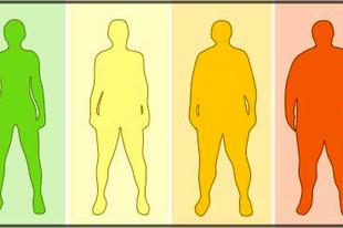 BMI kritika