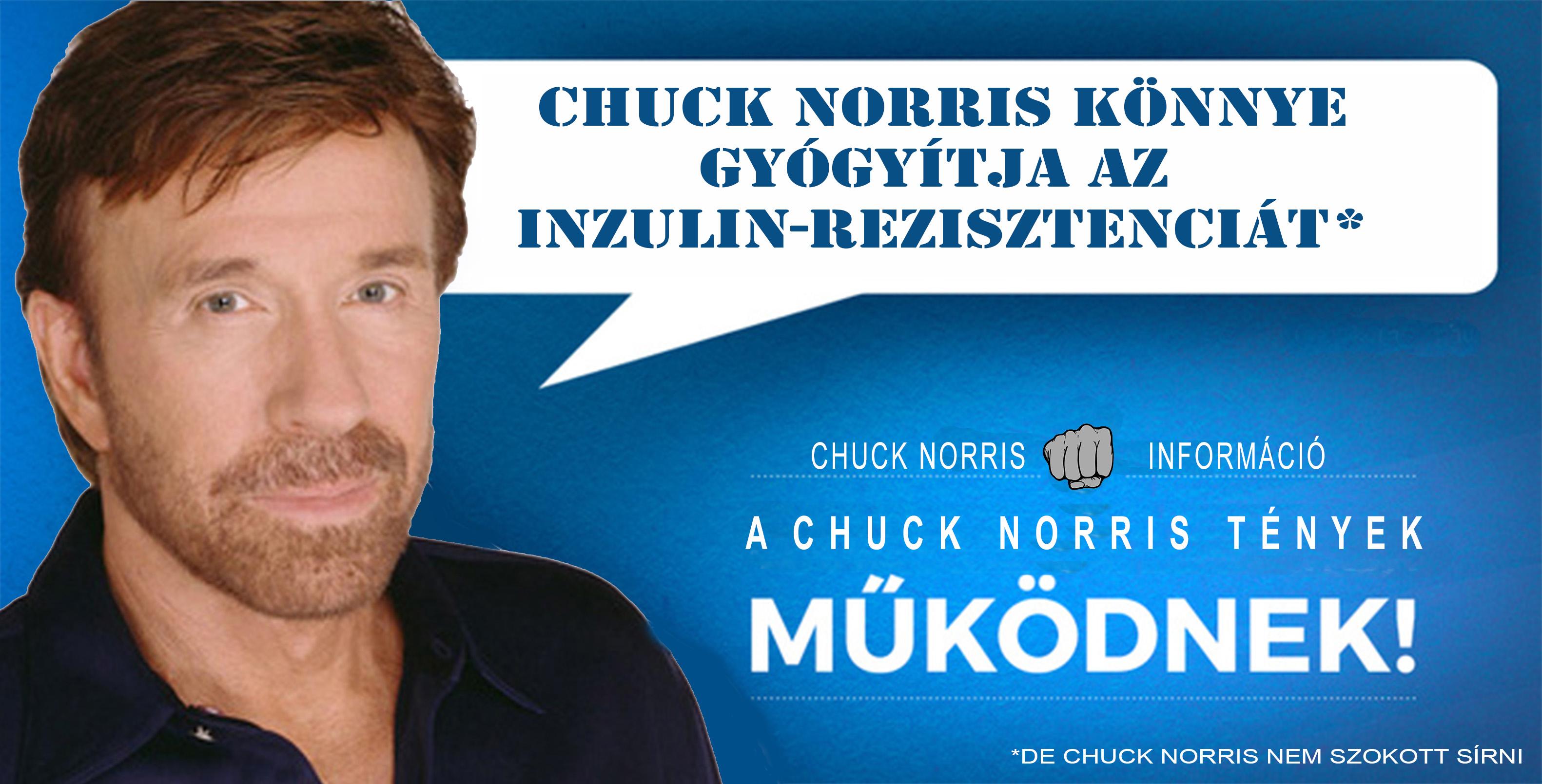 chuck-norris-tenyek.jpg