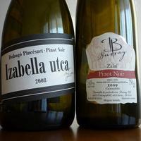 Pinot páros VII.