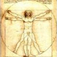 Leonardo Da Vinci wc-papíron?