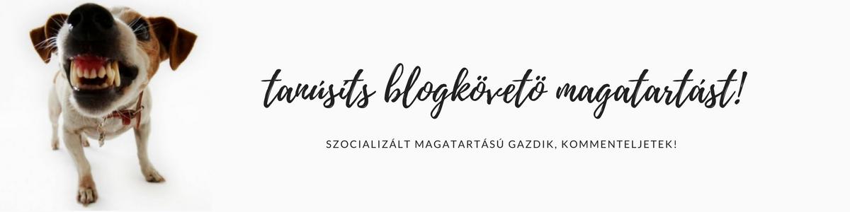 tanusits_blogkoveto_magatartast.jpg