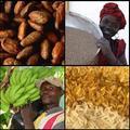 Fair Trade világnap és globális filmfeszt