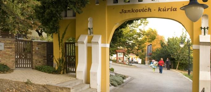jankovich_2.jpg