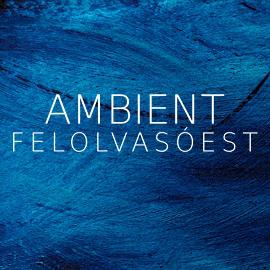 Ambient Est - 2012.04.23., Attention Alkotóműhely