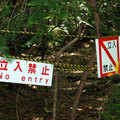 Aokigahara - Az öngyilkosok erdeje (18+)