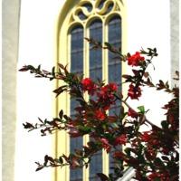 Tanulmány a Magyar Katolikus Egyház lelkipásztori lehetőségeiről