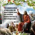 Szentháromság u. 8.