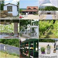 Rumba-rumba a Boráriumba , avagy vintage esküvői helyszín ajánló