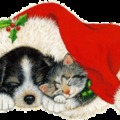 itt karácsony!