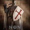 Az Anjouk előzményregénye: Non nobis Domine