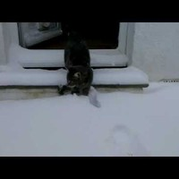 Ismerkedés a hóval