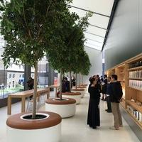 Az Apple szeretne Starbucks lenni, kávé és süti nélkül