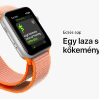 Mennyit bír az Apple Watch Series 3 Cellular aksija?