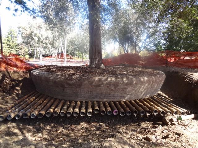 Mit gondolsz, mennyire knny 9000 fval betelepteni az Apple Parkot?
