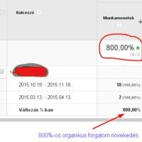 SEO esettanulmány: 800%-os organikus forgalom növekedés 9 hónap alatt !