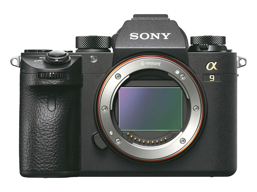 sonya9-1.jpg