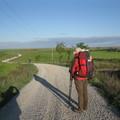 17. nap:Terridallos de los Templaros- Bercianos del Real Camino 23,8 km