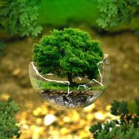 My classroom plays sustainably – felhívás tanároknak jó gyakorlat megosztására